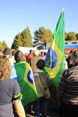 Manifestantes (4)