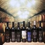 Casa do vinho (14)