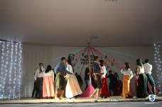 festival de talentos (449)