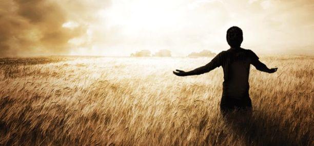 artigo-frei-mario-orando-no-campo-de-trigo-ao-por-do-sol1