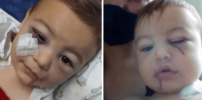 Menino que sobreviveu à chacina em Saudades segue em recuperação no hospital