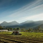 agricultura_agricultor__20201218_1519571754.jpg