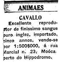 OESP 16/06/1919
