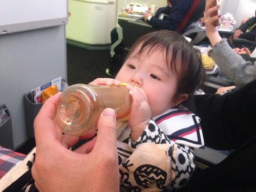 0歳児の海外旅行 JAL 日本航空