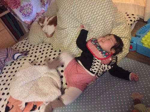 認可保育園問題 0歳児の育児