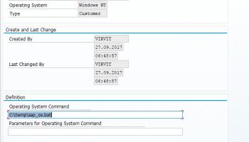 SAP Scripting