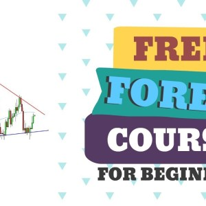 FOREX TRADING FOR BEGINNERS: INDICATORS