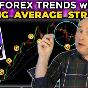 Trade FOREX TRENDS with my MOVING AVERAGE Trading Strategy!