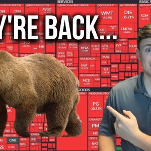 The Bears Are Back.... Stocks Crashing: Here's What I'm Doing!