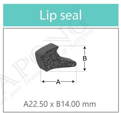 ยางฟองน้ำ Lip Seals