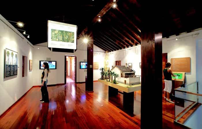 Museo del Palmeral en Elche, Alicante | Actividades en familia