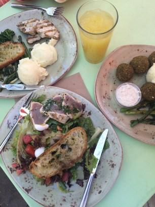 Seared Tuna , Tuna Nicoise Salad, Falafel with Cauliflower Mashed Potatoes