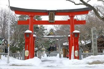 弥彦神社 冬の鳥居