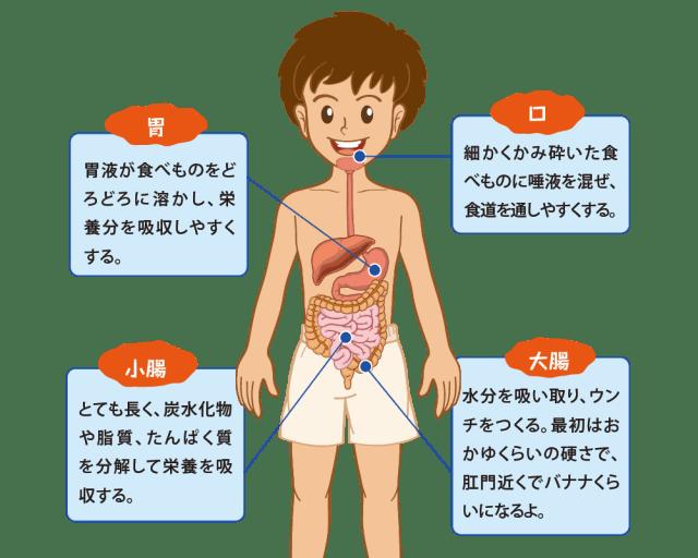 1608S_ichijiku01-01
