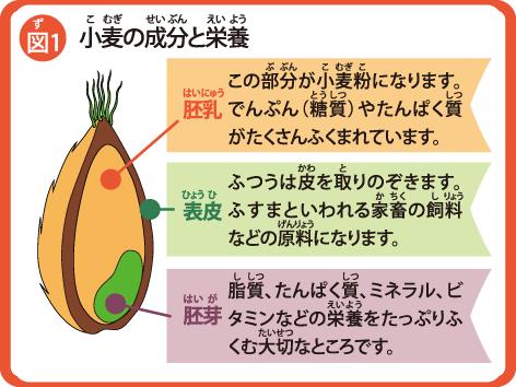 komugi_zu1