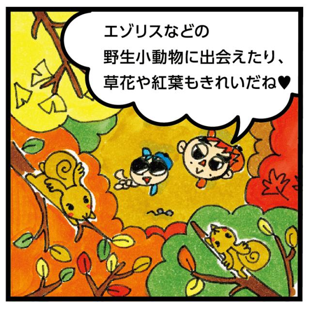1610_jyounetu_3