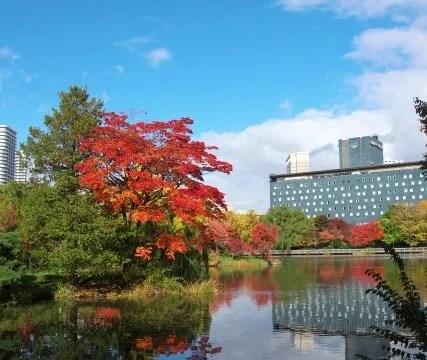 中島公園札幌パークホテル、秋の景色