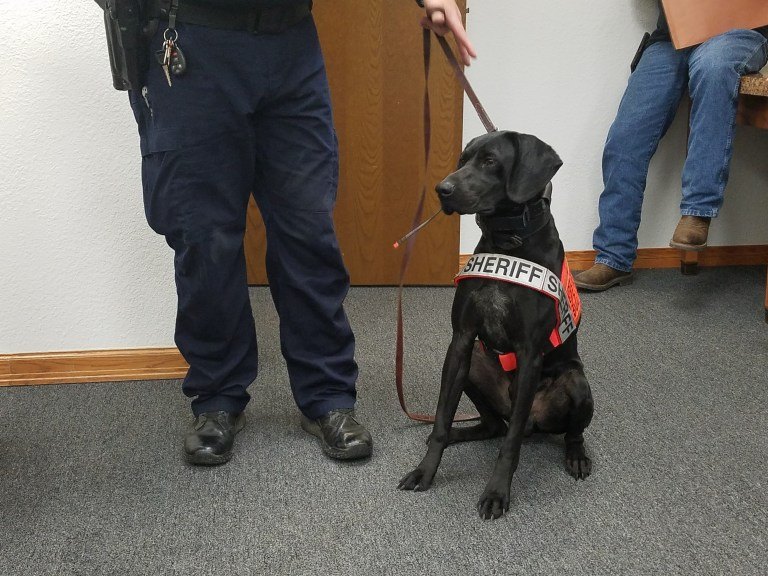 CCSO introduces new K-9 Officer at Commissioners meeting