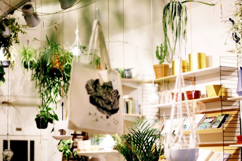 amsterdam I – paraplytak butikskatter & den godaste vegetariska burgaren
