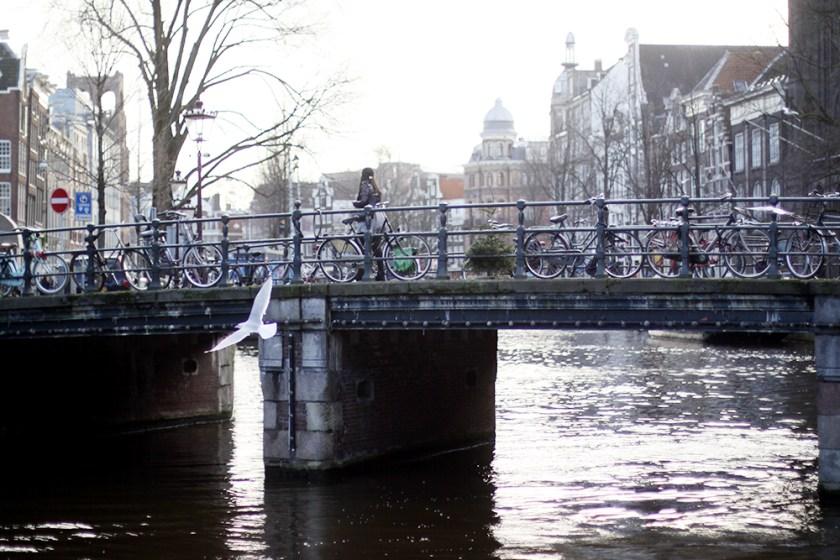 amsterdam IV – solen & ett köp som borde gjorts