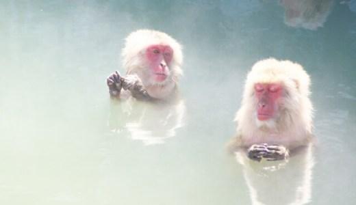 ヒルナンデスで紹介!入浴剤エプソムソルトの使い方や半身浴の量は?