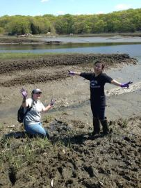 Gabby and Michelle, undergraduates in the Fulweiler lab. Gabby stuck waste deep in the tidal flat at my Jarvis Creek site on my very first field trip.