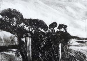 Gorse Boundary - Black Ink