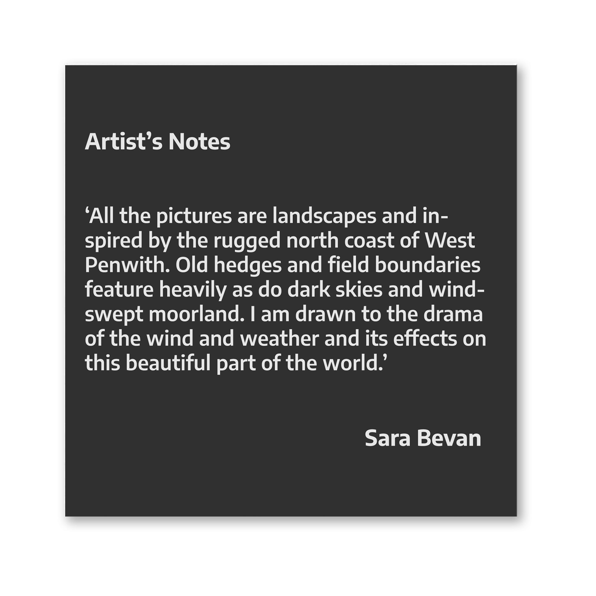 Artist's Notes