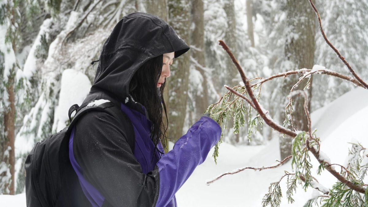 加拿大BC省冬天適合雪鞋健行的五個去處- 浪漫的雪地健行散步