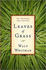 Leaves of Grass.jpg