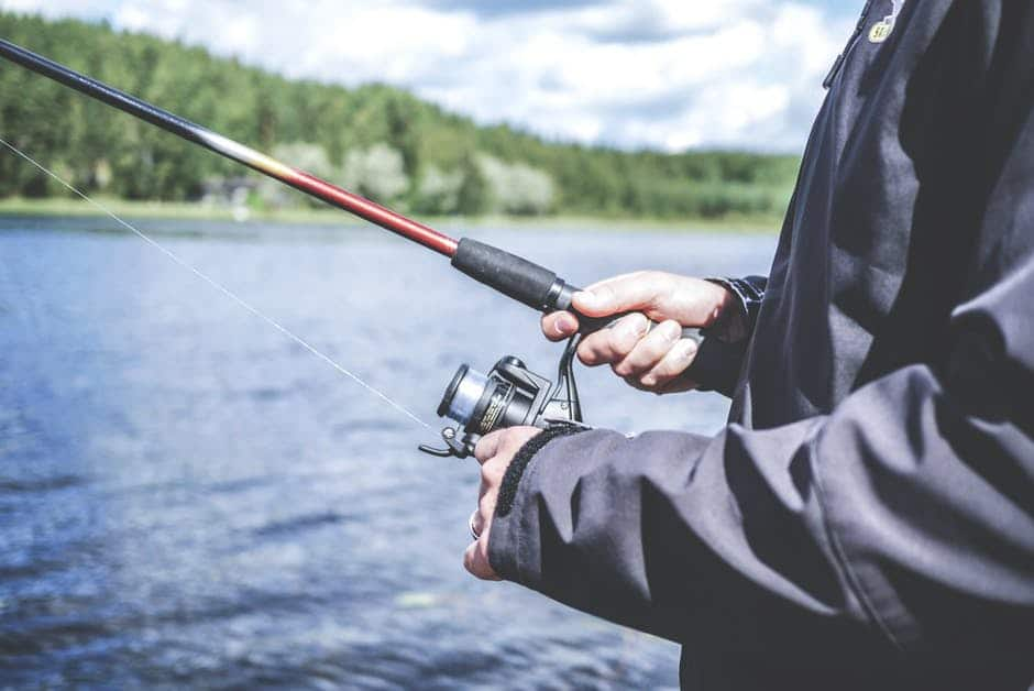 Sara Grillo - Financial Advisor Fishing For Leads