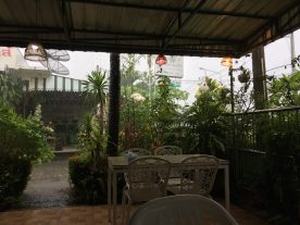 Caught in a 1-hour downpour over lunch. A wonderful way to relax and enjoy warm rain for a change!