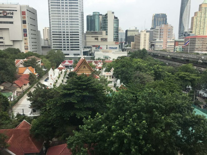 Beautiful downtown Bangkok. This photo taken between two of the largest malls I've seen in my life.