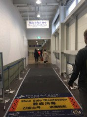 Shoe cleanser for entering airport