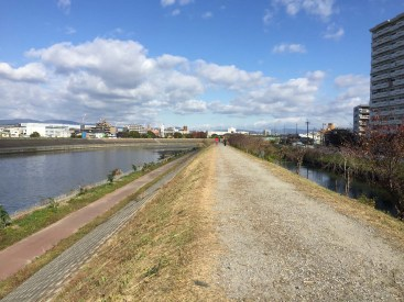 Numerous running, biking and walking paths in our neighborhood go along the canals.