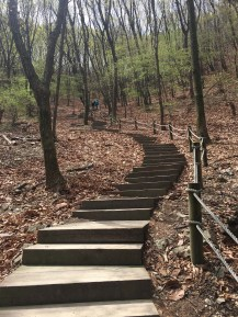 Every great climb with a staircase begin must.