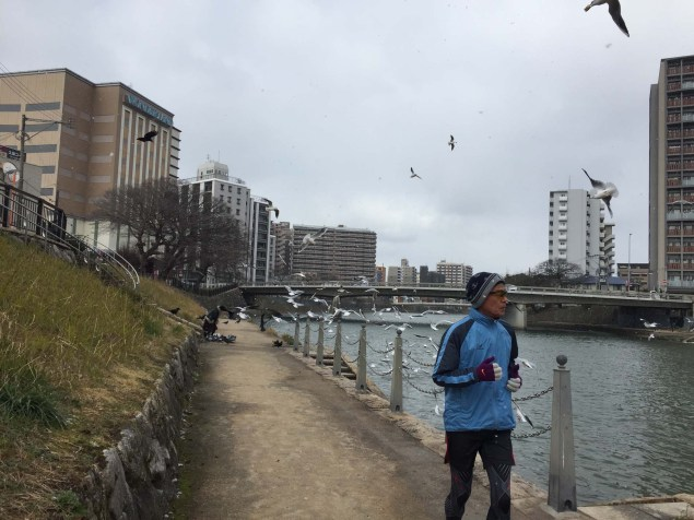 A well-used running route along the canal, with a woman feeding birds in the background.