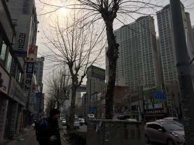 A lot to take in visually on these Korean streets.