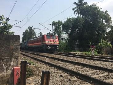 The trains come blasting through, no crossing, so beware!