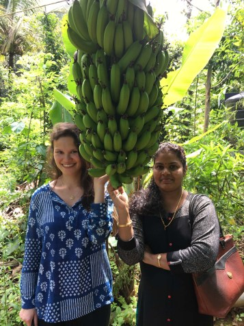 "Spice plantation tour. We learned about the various fruits and spices grown in India. These are ""bananas""."