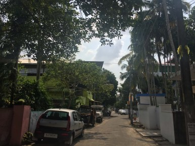 Our street, filled with lush greenery like everywhere in Kochi.