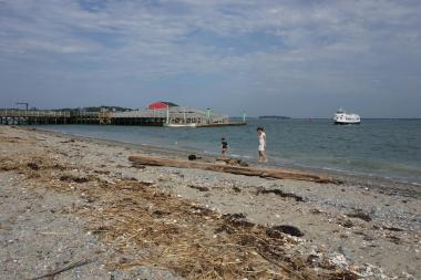 Boston Harbor Islands, Peddocks Island