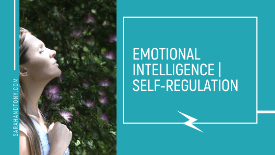 EMOTIONAL INTELLIGENCE | SELF-REGULATION