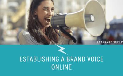 Establishing a Brand Voice Online
