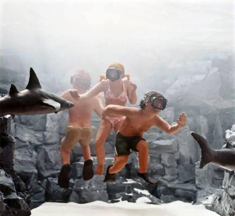 Swimming with Sharks - 2005 - 20 x 20 - Chromogenic Print