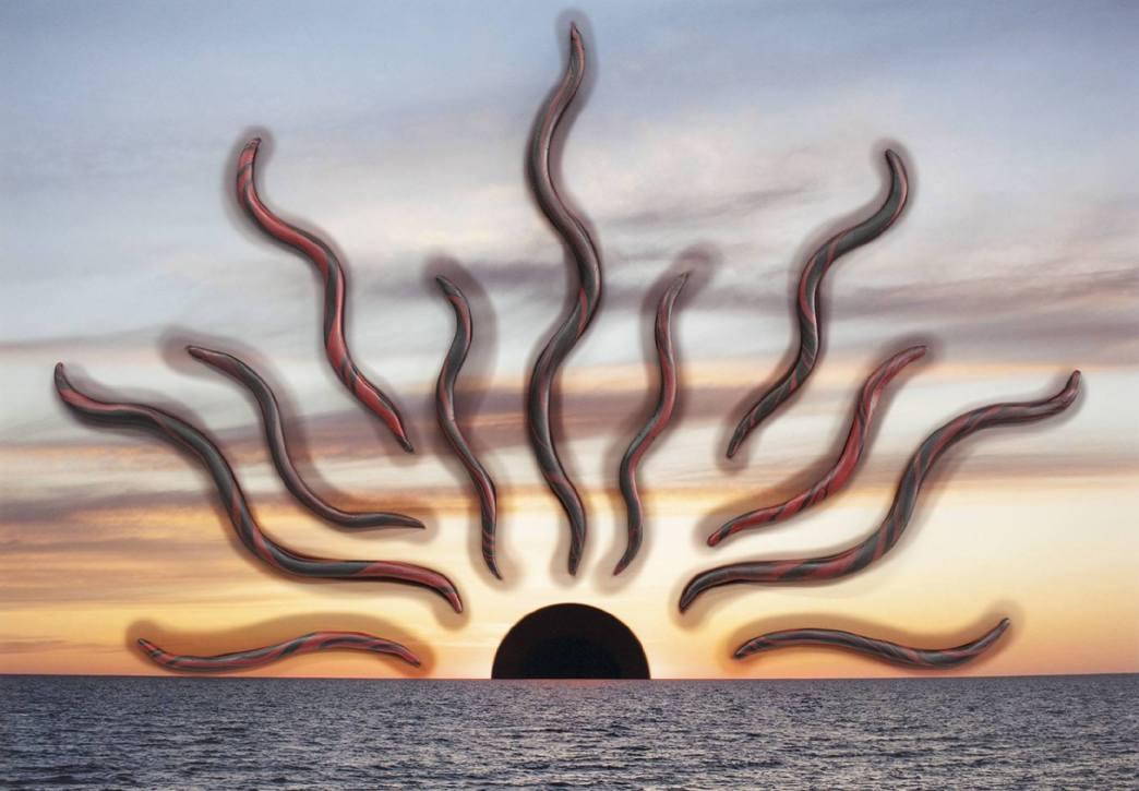 Red Sun #1 - 2018 - 12 x 17 - Chromogenic print with epoxy