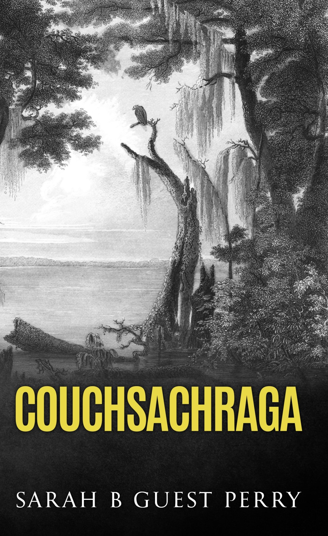 """""""Couchsachraga"""" front cover. 2018."""