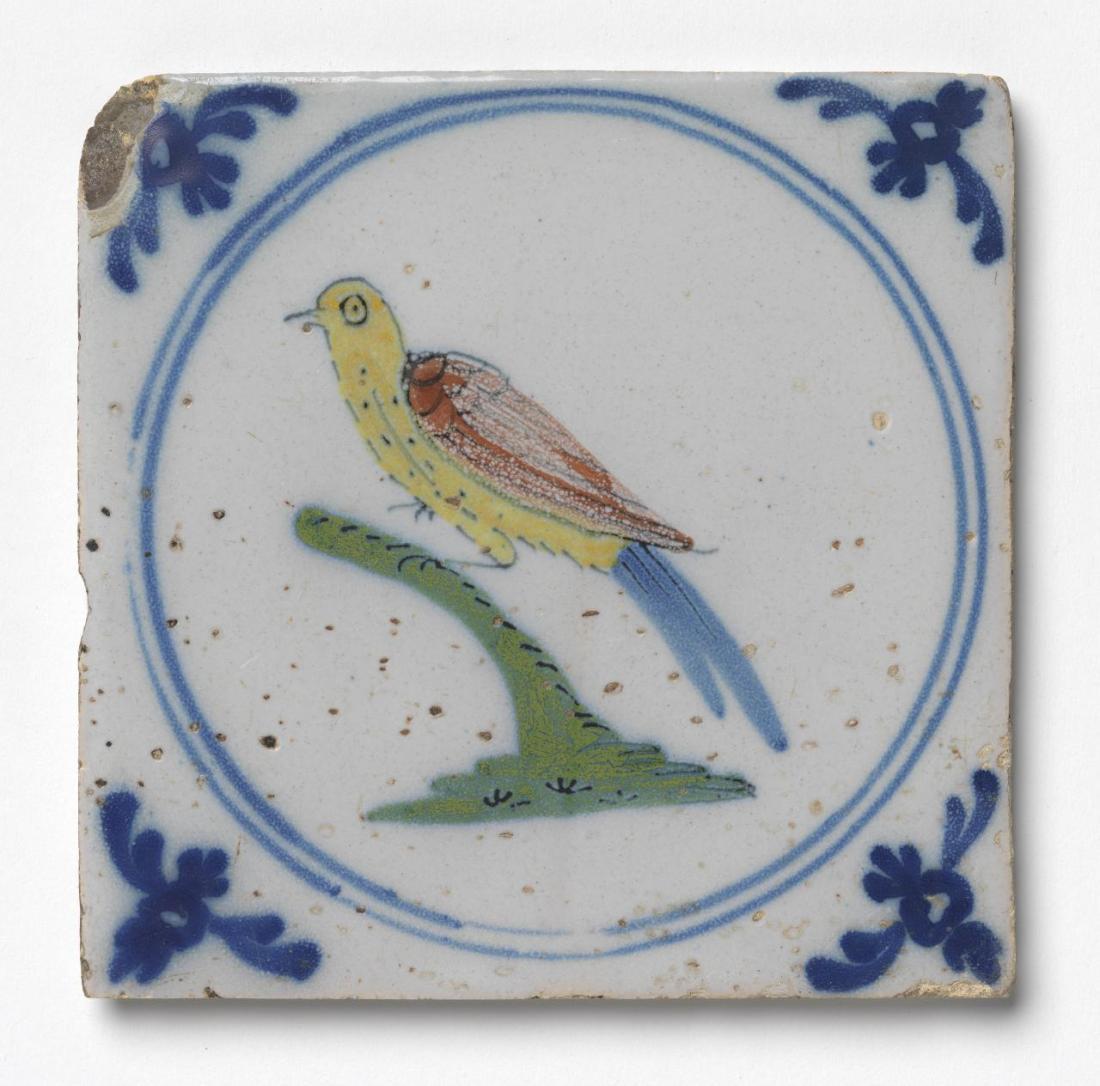Blue tail. ca. 1740.