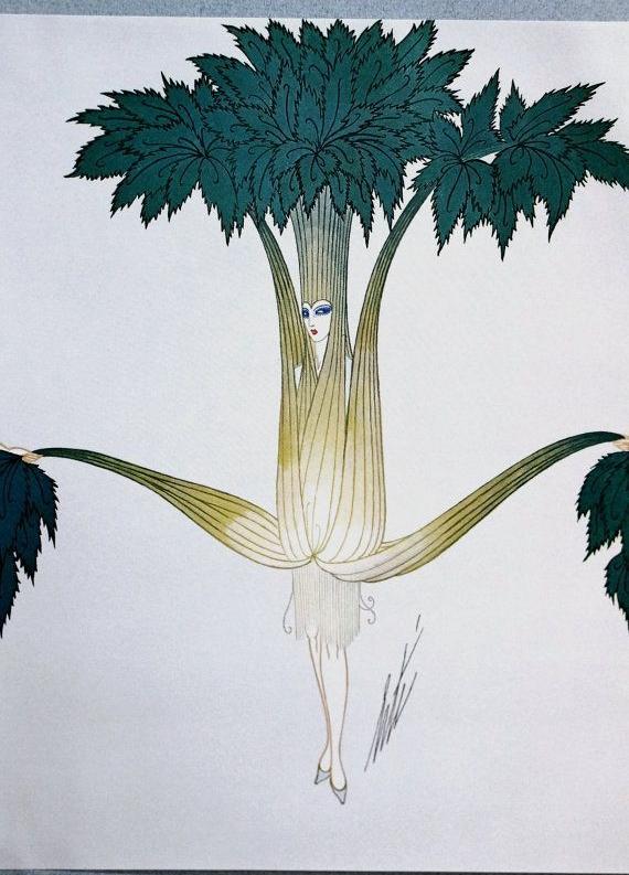 Celery. 1926.