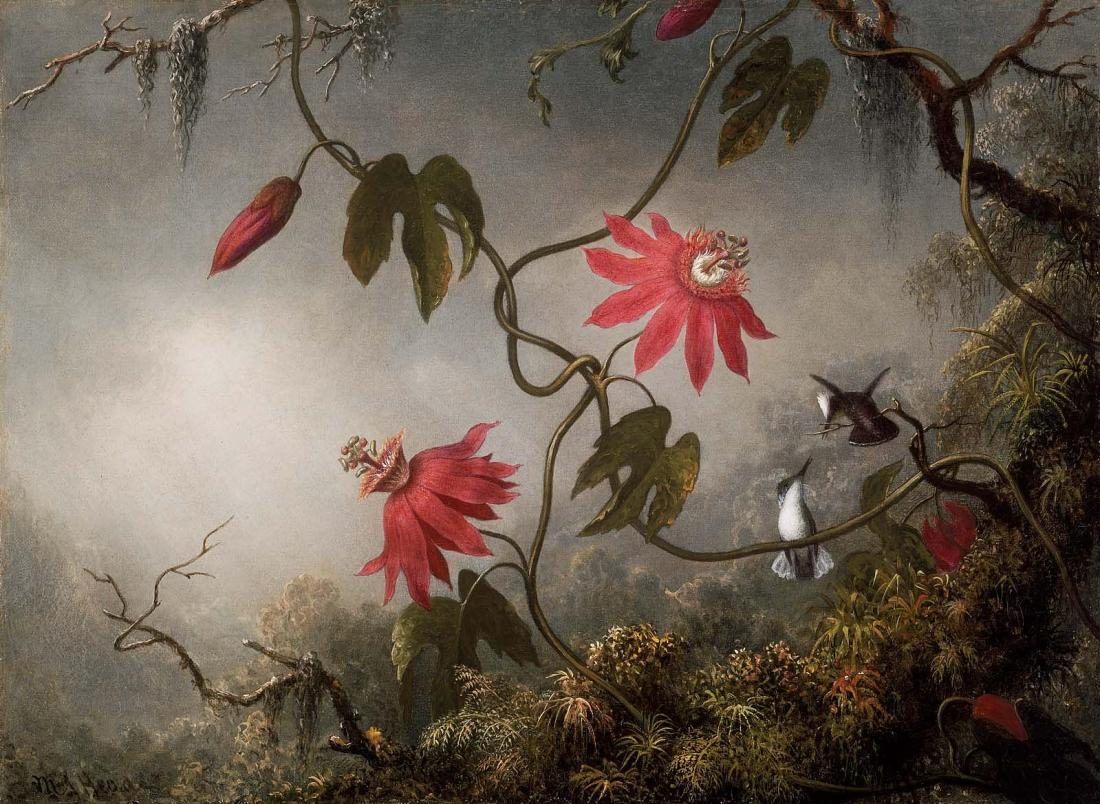 """""""Passion Flowers and Hummingbirds."""" ca. 1870-1873."""